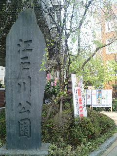 江戸川公園花祭り