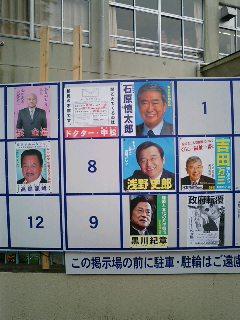 花見実況中継(文京区)