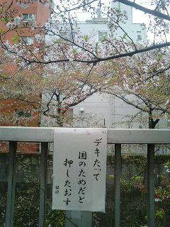 早稲田川柳2