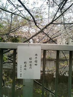早稲田川柳4