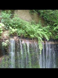 白糸の滝に行きました