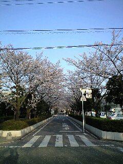 ご近所の風景2