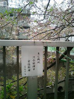 早稲田川柳