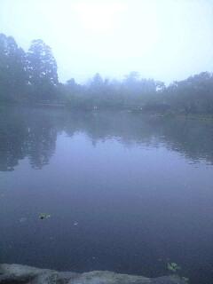 朝霧の金鱗湖